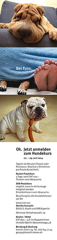 Inserat_Hundekurs